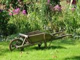 Restaurera en gammal trädgård